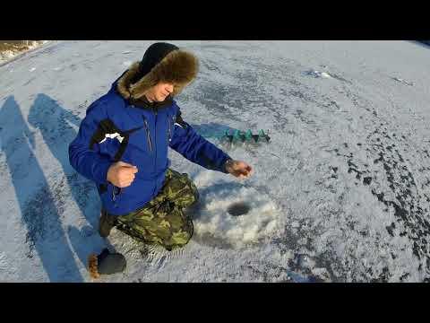 НЕОЖИДАННЫЙ ГОСТЬ НА РЫБАЛКЕ! Зимняя рыбалка на окуня 2018. Ловля окуня на блесну зимой