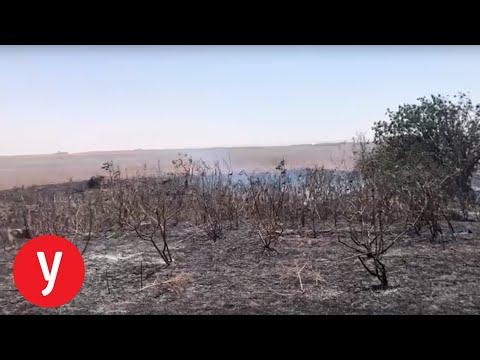אירוע שריפה ביער כיסופים
