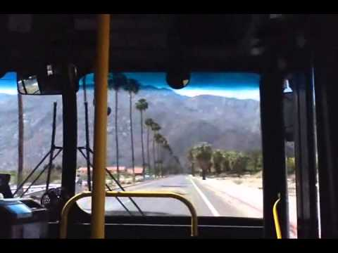 WANNA BUY A BUS? ... with Dennis Daily