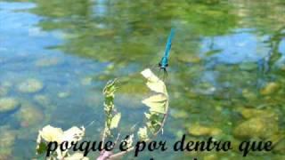 Vídeo 7 de Eco Grupo