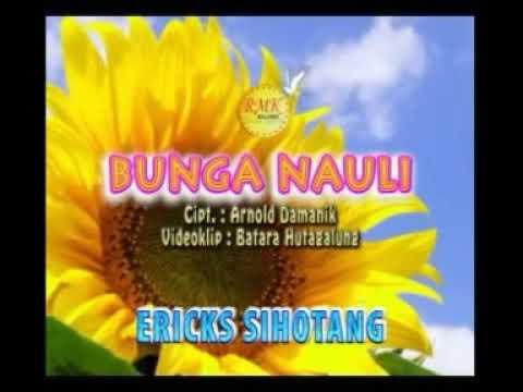 Bunga Nauli - Erick Sihotang [Lagu Batak Sendu, Lagu Batak Populer]