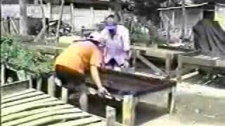 La Huerta Hidroponica Popular Clase 2