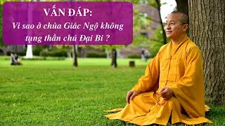 Vấn đáp: Vì sao ở chùa Giác Ngộ không tụng thần chú Đại Bi ? | Thích Nhật Từ