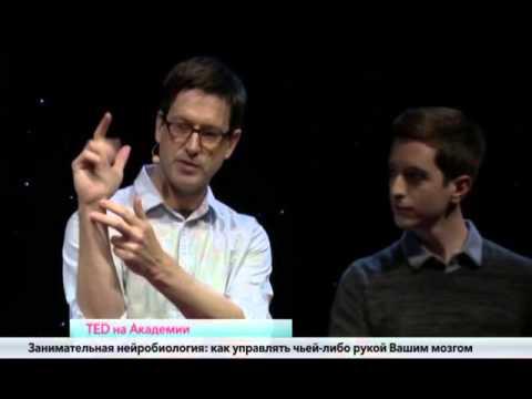 Занимательная нейробиология: как управлять чужой рукой используя свой мозг