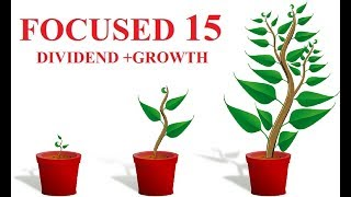 BEST 15 STOCKs  FOCUSED PORTFOLIO FOR NEW INVESTORS   DIVIDEND + GROWTH