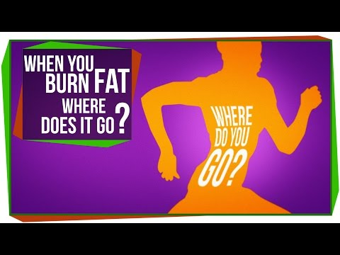 Home remedies to burn belly fat fast photo 1
