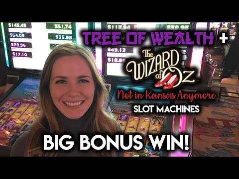 $8.80 MAX Bet! Tree of Wealth Great Win! Not in Kansas Anymore Rare 2 Tall Reels and 3X Multiplier