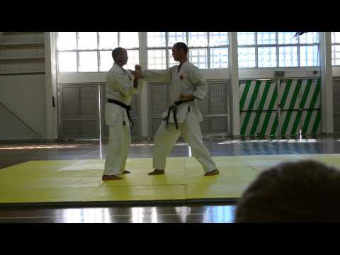 2013 QLD Camp - Niseishi Bunkai with Counters Image 1