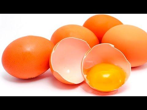 Clique e veja o vídeo Curso Galinhas Poedeiras - Produção e Comercialização de Ovos