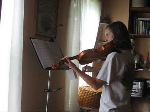 Pirates Of The Caribbean - Davy Jones On Violin video