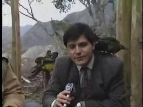 chascarro Mauricio Bustamante TVN