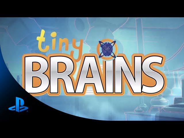 Руководство запуска: Tiny Brains по сети