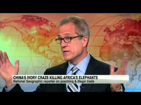 China's craze kills Africa's elephants