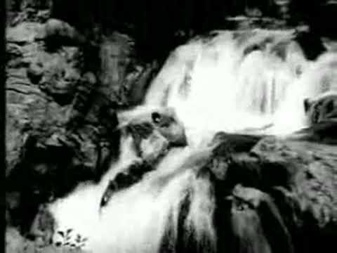 Or Aayiram Parvayile Songs by Vallavanukku Vallavan tamil video...