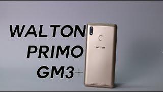 Walton Primo GM3+ Review