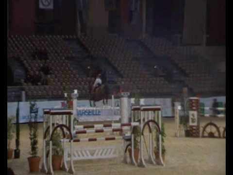 ♂ Khan Des Grez- Jumping Stallion  (sf) By Cabdula Du Tillard video