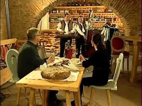Lautarii de la Zimnicea   Dinescu