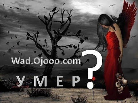 wad ojooo умер ?! Что происходит на wad ojooo com?