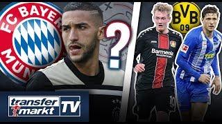 Bayern mit Kontakt zu Ziyech? – BVB an Brandt & Stark interessiert | TRANSFERMARKT