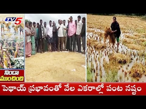Special Report on Damages in Coastal Area of AP |  #PethaiCycloneEffects | TV5 News