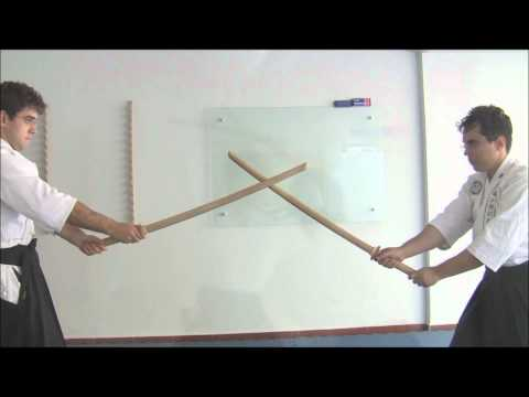 Ogawa Ryu Brazil Kenjutsu Training Moments Image 1