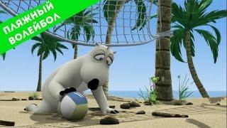 БЕРНАРД И СПОРТ - Пляжный волейбол