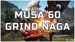 BDO - Grind Musa 60 Desert Naga