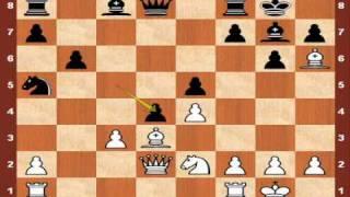 World Chess Championship 2010: Topalov vs. Anand - Game 1