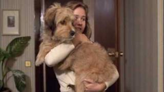For the Love of Benji (1977) part 7