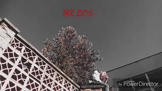 MR.BOSS 19