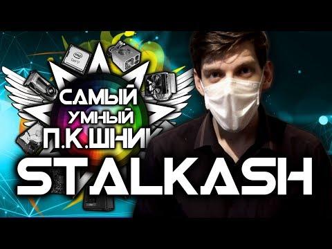 САМЫЙ УМНЫЙ ПКШНИК #4 - STALKASH