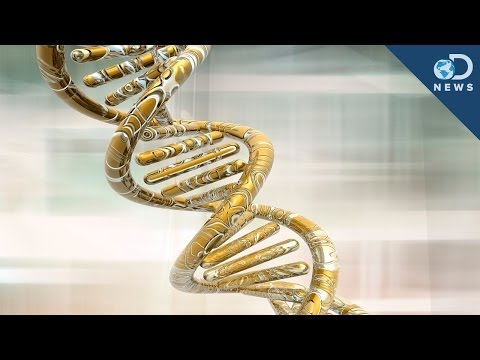 5 Genetic Discoveries in 2013
