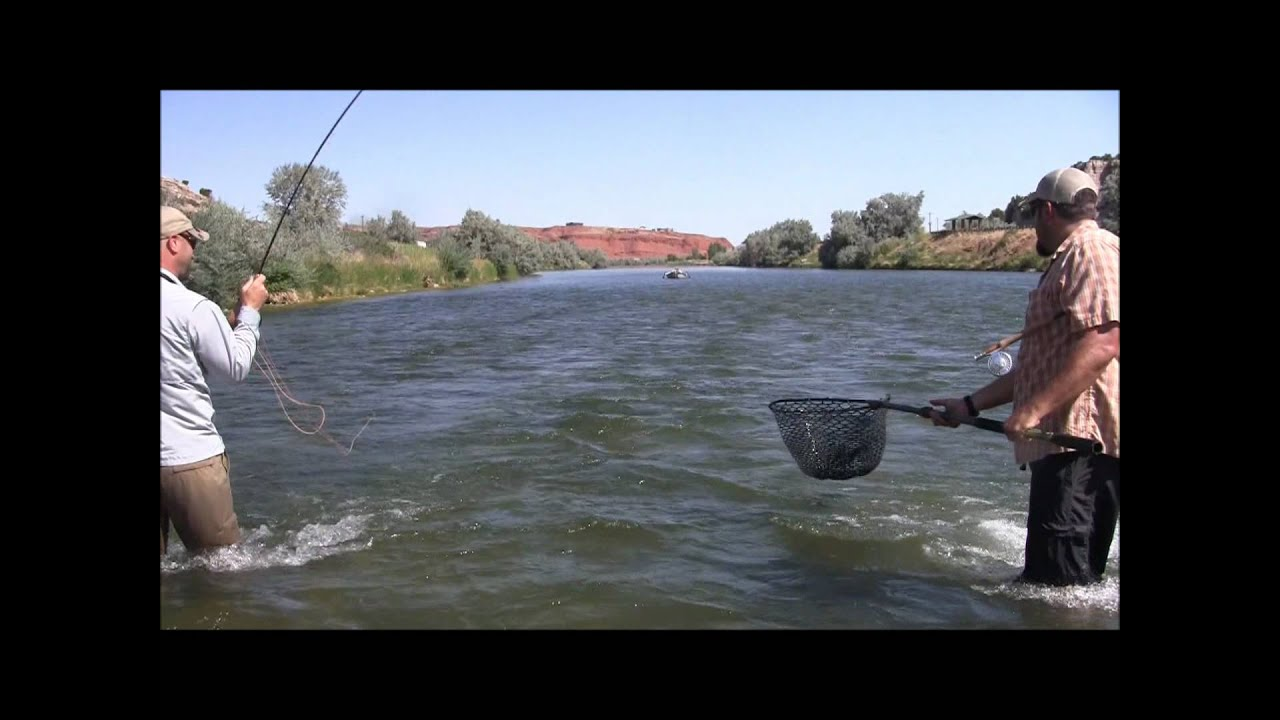 The humble fly shop presents thermopolis wyoming youtube for Wyoming out of state fishing license