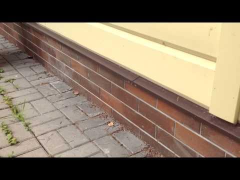 Как сделать отмостку тротуарной плиткой
