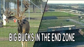 Football & Deer Farming at Brown Trophy Whitetail Ranch | Deer and Wildlife Stories