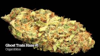 2014 HIGH TIMES Michigan Medical Cannabis Cup Entries Part 2