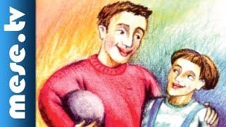 Mikola Péter: Mondd, apa... (megzenésített vers gyerekeknek)