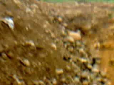 operación de excavadoras alumnos instructor daiver lópez