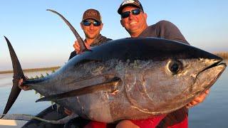 Massive Yellowfin Tuna Vs Big Blackfin Tuna {Catch Clean Cook} blind Taste test!