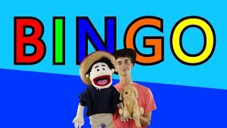 BINGO | Dog Song and Nursery rhymes for Children, Kids and Babies | The Lulus