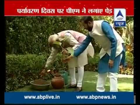 Modi and Javadekar  plants sapling to start nationwide plantation drive