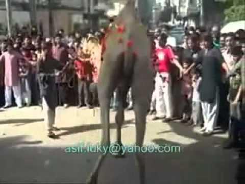 Allah say Darr Aur Tuba Tuba Kar  Part 1 2 )  Qawwali...