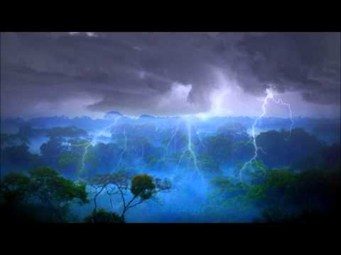 8 HOURS Thunderstorm in Amazone's  rainforest - sounds of Jungle