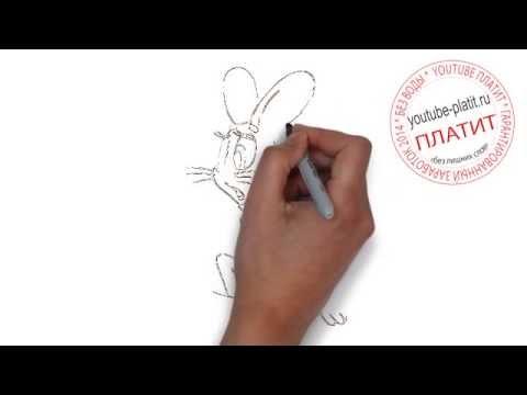 Ну погоди мультфильм онлайн  Как рисовать мультфильм Ну погоди поэтапно карандашом