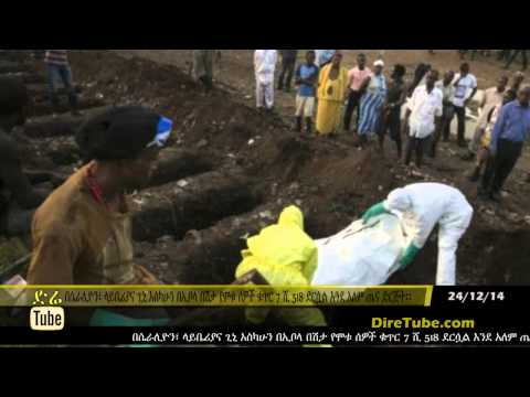 Africa should stop relying on West aid over Ebola |DireTube News