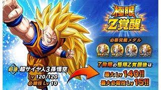 STAGE 1-19 | SSJ3 Goku Extreme Z-Awakening NEW MODE Gameplay! | Dragon Ball Z Dokkan Battle