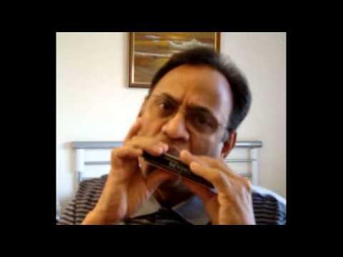 Sagar Kinare - Harmonica