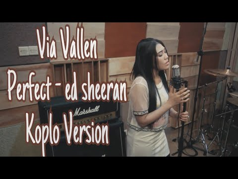 Via Vallen - Perfect  ( cover ) Koplo Version