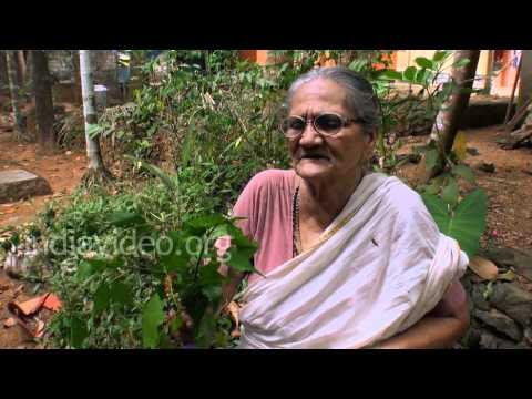 Garden nightshade - Folk medicine for cancer