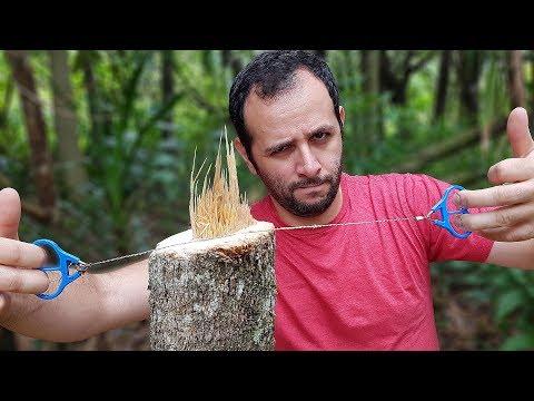 Arame que corta árvores: nós testamos!